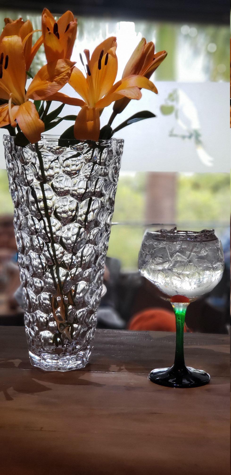 Coco Bambu Lago - Gin Tônica